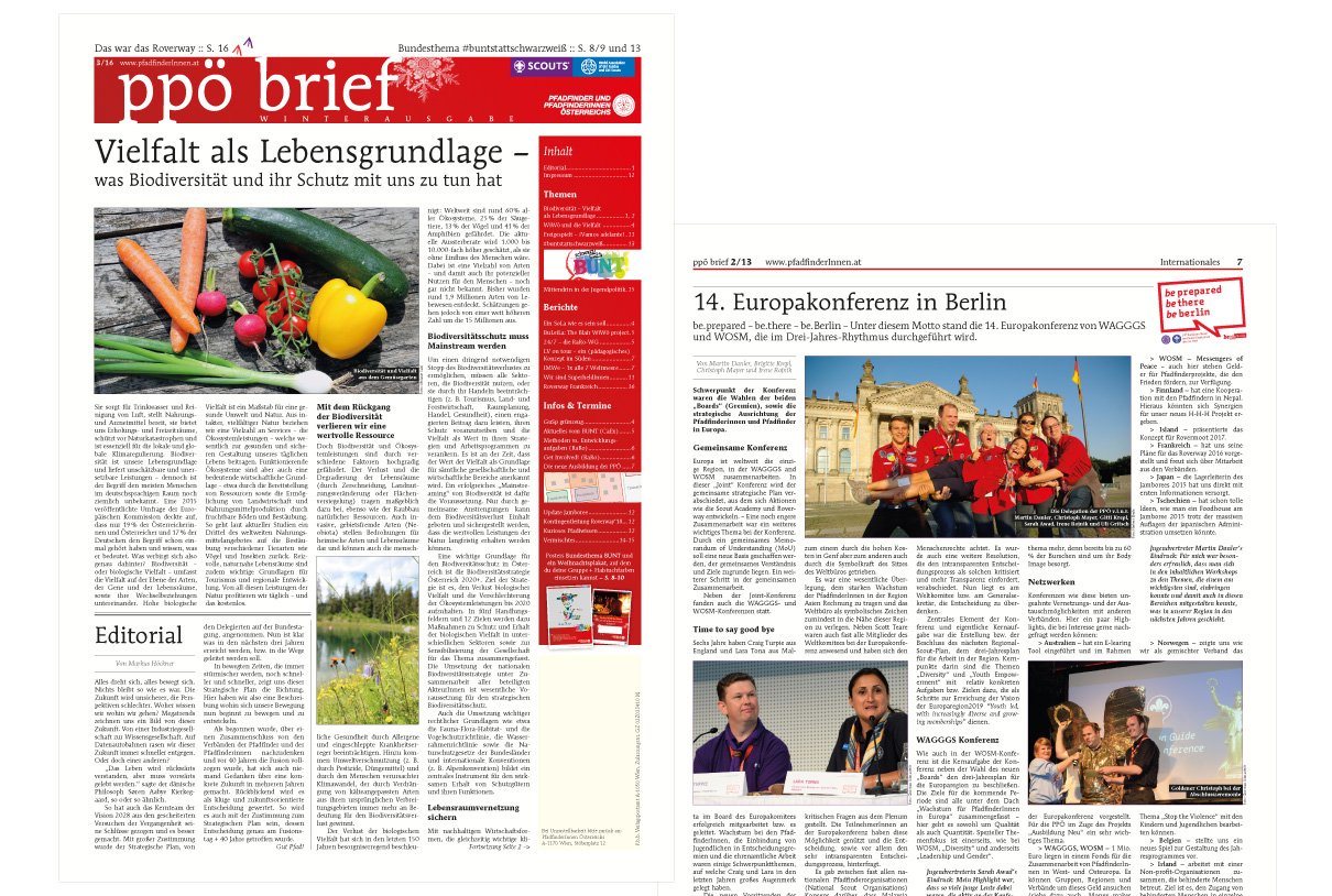 Editorial Design: ppö brief