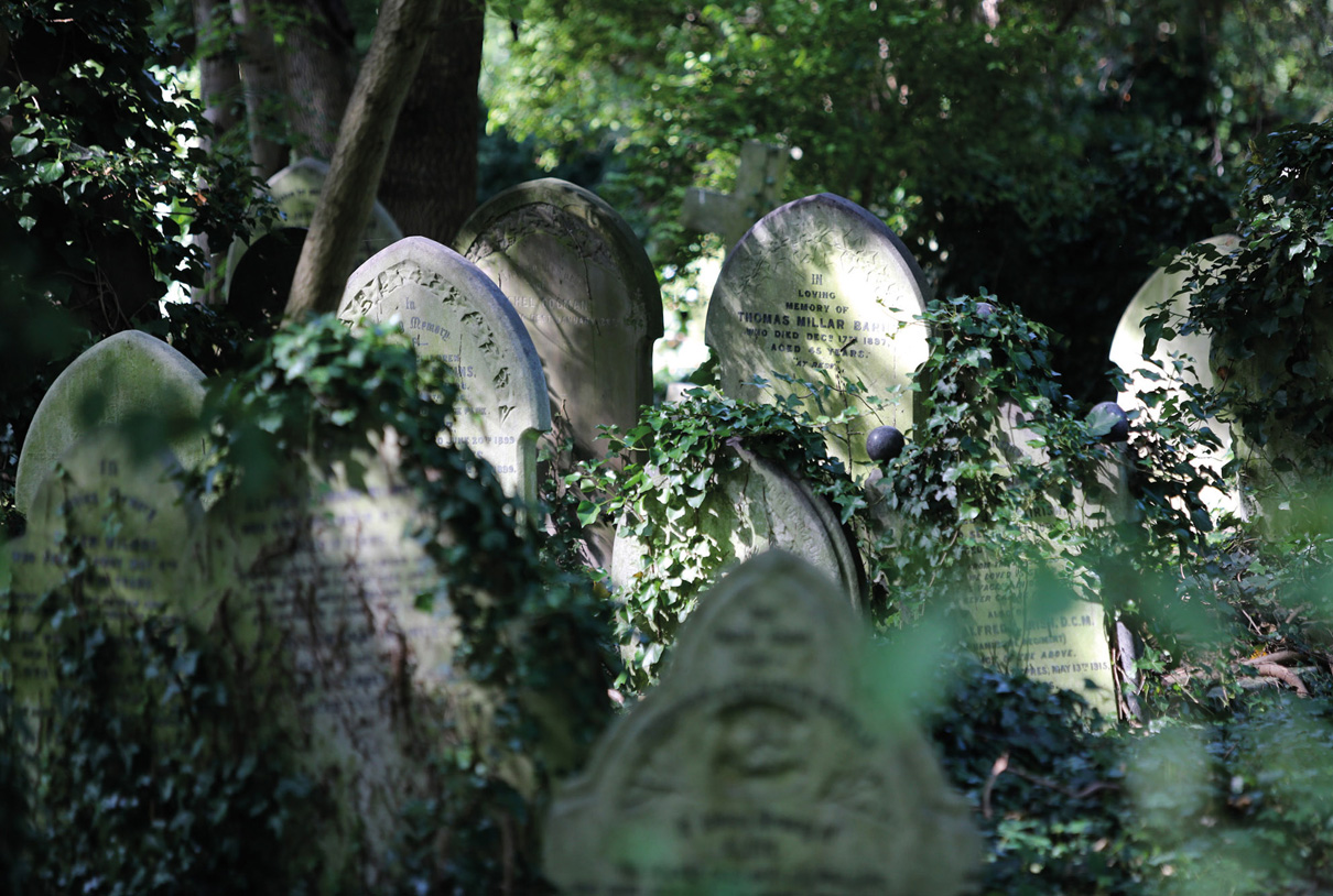 Travel/documentary: London Highgate cemetary